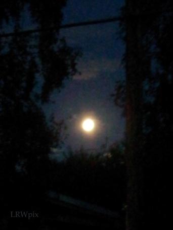 1st super moon of 2014